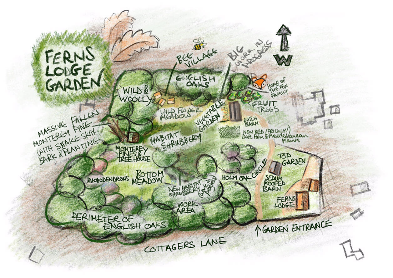 Ferns Lodge Garden Map