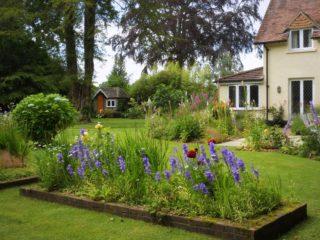 Top garden - with irises in full bloom. | NGS Garden Ferns Lodge