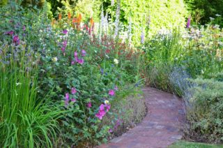 A sunny evening at Ferns Lodge with double baked brick pathway leading to the terrace. | NGS Garden Ferns Lodge