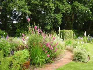 Brick path in the top garden with foxgloves in full bloom. | NGS Garden Ferns Lodge