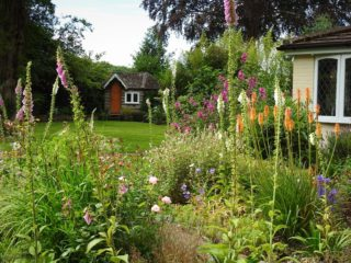 Red hot pokers, foxgloves and much else. | NGS Garden Ferns Lodge